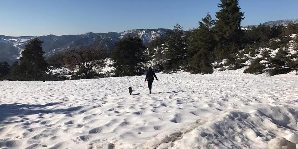 hurley-snow-3